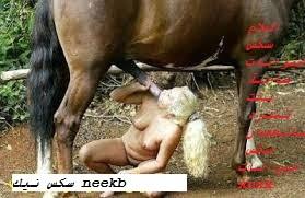 افلام سكس حيوانات ساخنة بنت تنفرد بالحصان سكس حيوانات xnxx