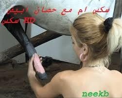 سكس ام مع حصان ابيض سكس HD